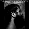 The Sparow And The Crow / After Afterall (2008)