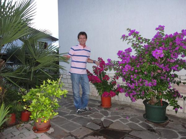 ♥ ♥ Dans notre jardin italien  ♥ ♥