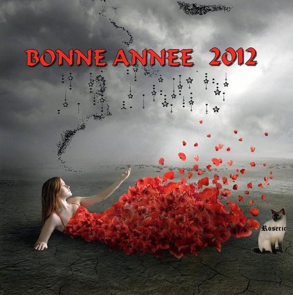 ♥ ♥  Bonne Année 2012  !!!  ♥ ♥