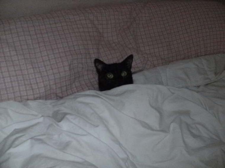 Au lit!