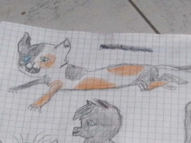 ♥Mes dessins♥