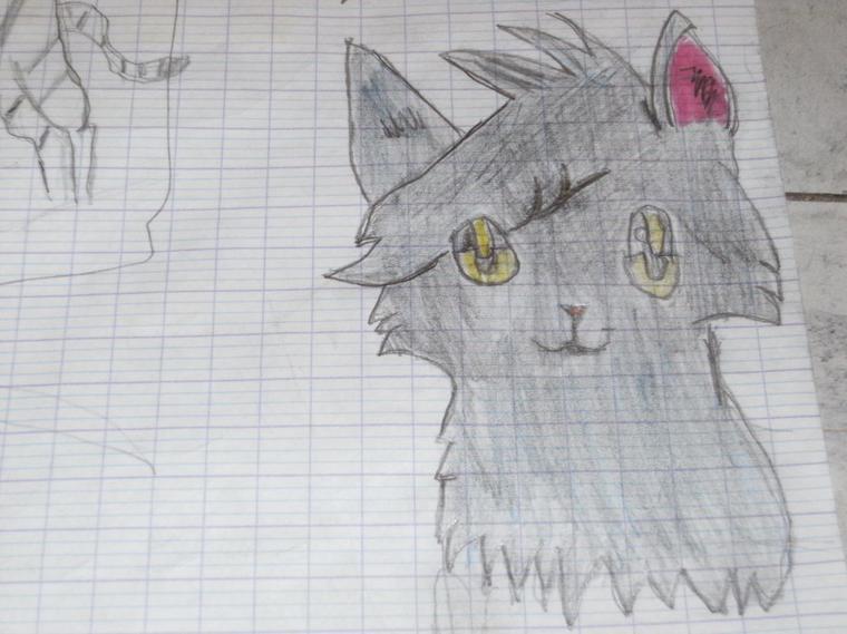 !Mes dessin!