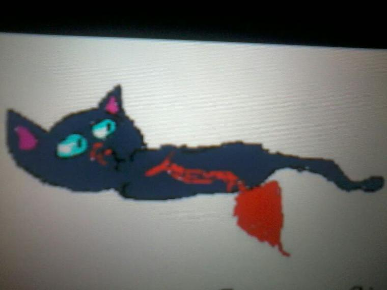 Mes dessins lgdc sur DS