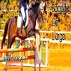 ‹ L'équitation, plus qu'une passion, un art a pratiquer. Un nouveau monde, un paradis.  ›