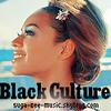 Black Culture (2009)