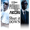 Pitbull ft Akon - Shut it down (2010)