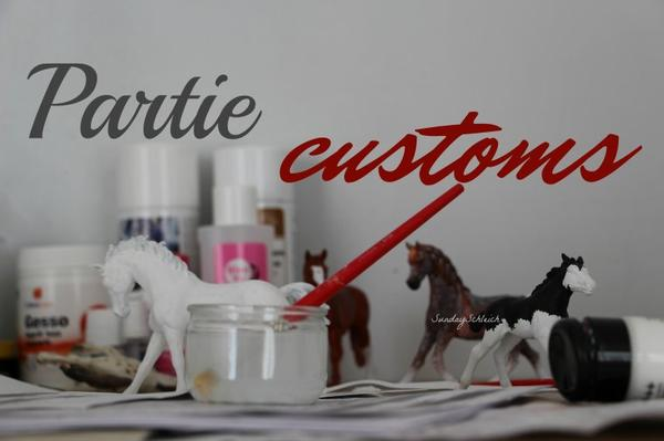 Partie customs