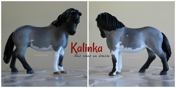 Kalinka des crins en brosse
