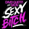 Akon & David Guetta- Sexy Bitch  (2009)