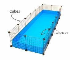 Astuce ! Comment construire une cavy cage pour cochon d'inde