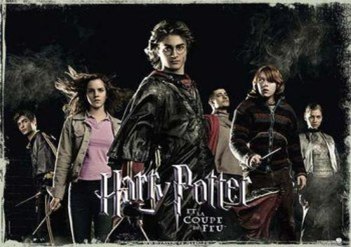Harry Potter 4 : La Coupe de Feu.