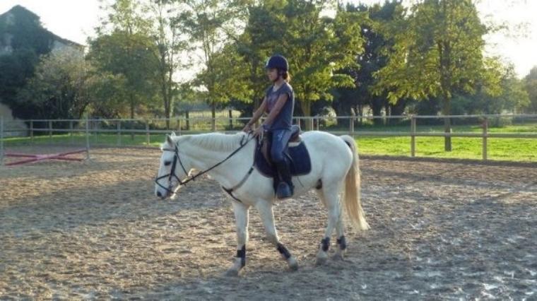 ♥ Mon poney ♥