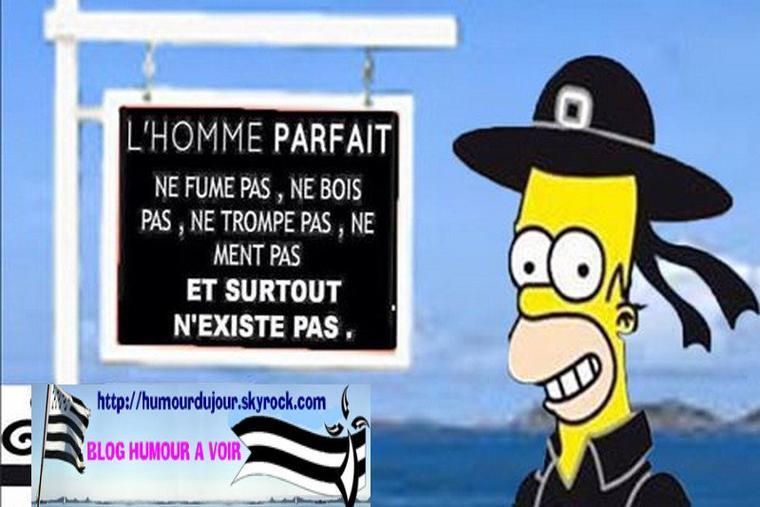 L'HOMME PARFAIT