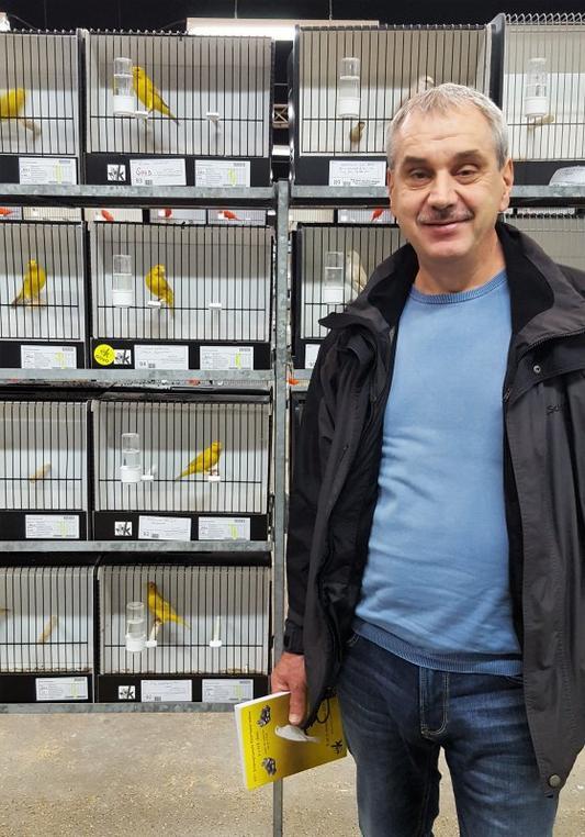 Goldmedaille in Leuven/Belgien Isabell gelb int. im Stamm 375 Pkt.