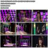Davichi, Sun Ye + Tae Yeon - Stand Up For Love [Live 2008.12.29] (415.41 MB)