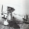 """Fiat C.R.32 """"Chirri""""."""