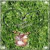 FIMO Bambou et fleurs