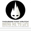 Bring Me to Life / Thousand Foot Krutch - Bring Me To Life (2009)