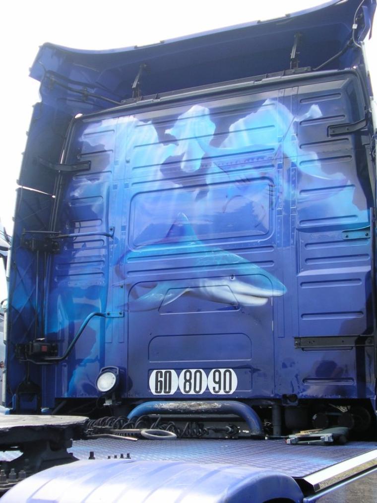 volvo nh des transports allienne (59)