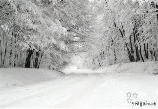 Mort dans la neige