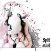 split 2