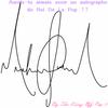 Auré tu aimé avoir un autographe du King-Of-Pop ?