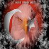 L'aigle turc