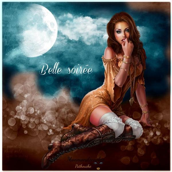 bonsoir ! je souhaite à tous mes amis(e)s une belle soirée .. et une agréable nuit bercée de rêves étoilés .. bisous Josie