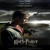 Harry Potter 7 (Et les Reliques de La mort ) Part1
