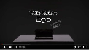 Rubrique musique : Willy William - Estelle