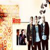 2. Le groupe. /  Blog musique