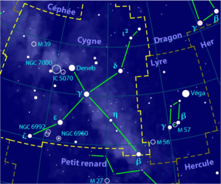 Cygne = Cygnus