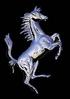 Petit cheval = Equuleus
