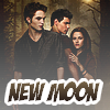 ♪ Twilight New Moon soundtrack