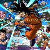 1er participant: Dragon Ball/Z/GT/AF/KAI