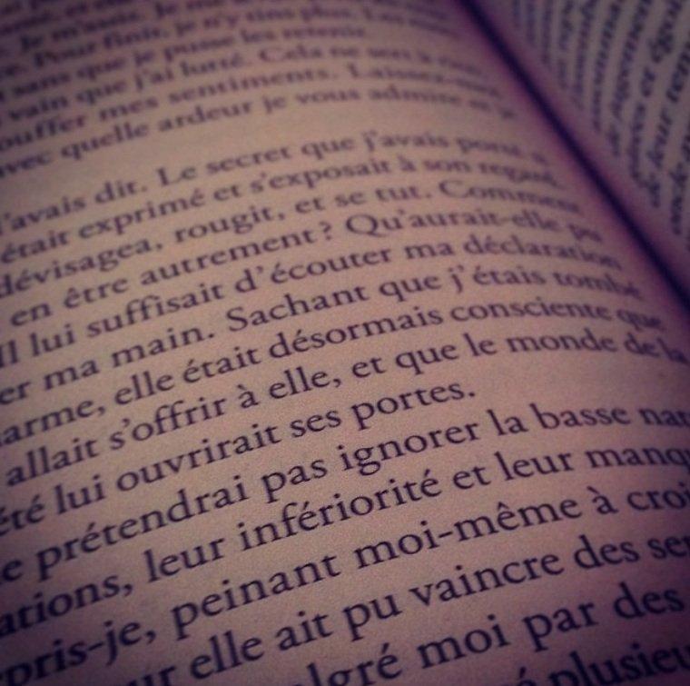 ~ Liste de livres que j'aimerai lire ~