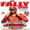 Concert de Fally Ipupa au Zénith de Paris le 2 janvier 2010