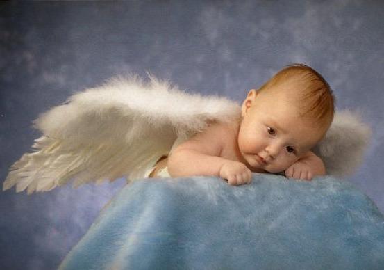 Baby Angel's .........