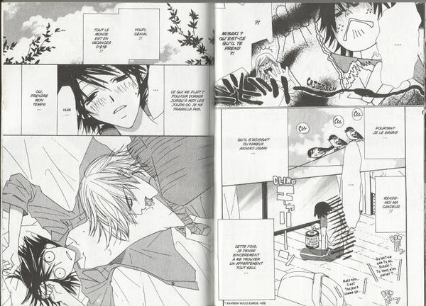 Junjou romantica Tome 3-4
