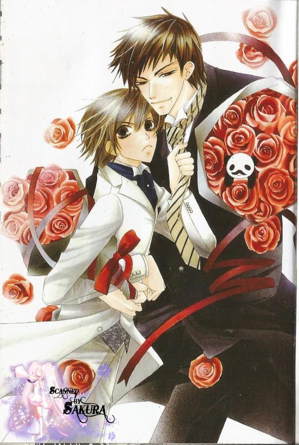 Junjou Romantica Tome 5-1