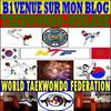 b1veneu sur mon blog