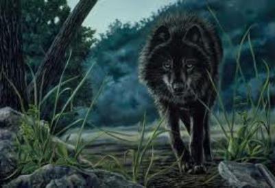 Transformation de Silver en loup-garou