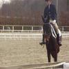 Concours de Dressage à Mulhouse le 8 Mars 2009