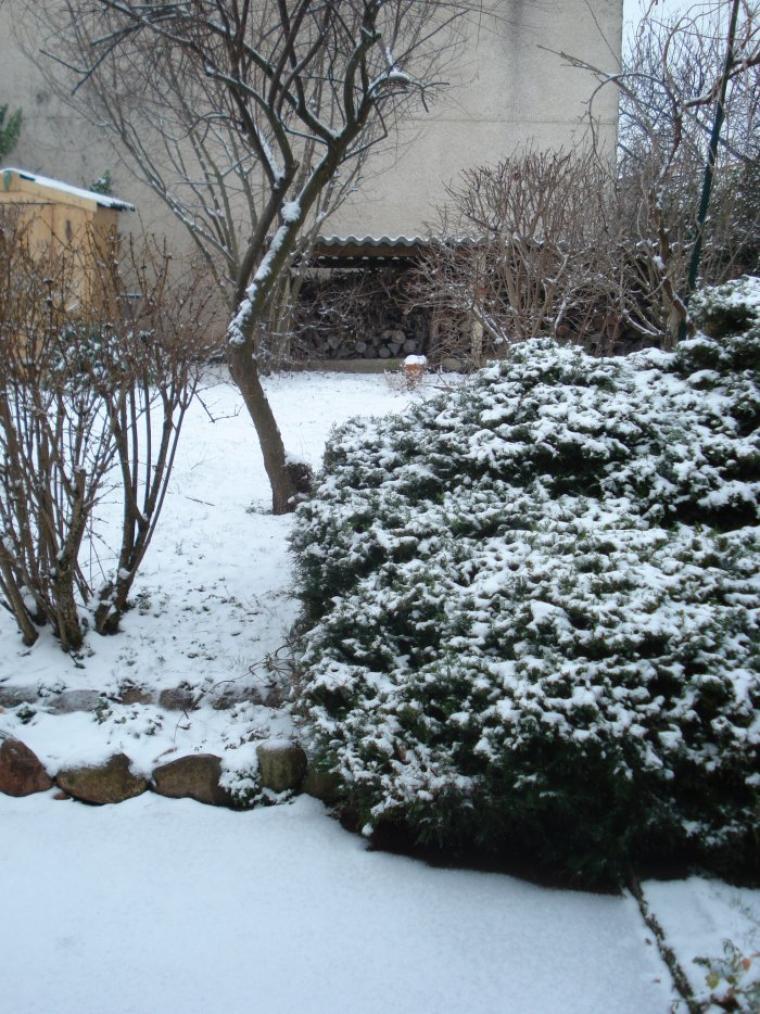 Skipper fait de la luge c 39 est aujourd 39 hui le premier jour de l 39 hiver blog de toutoune42 - Jour de l hiver ...