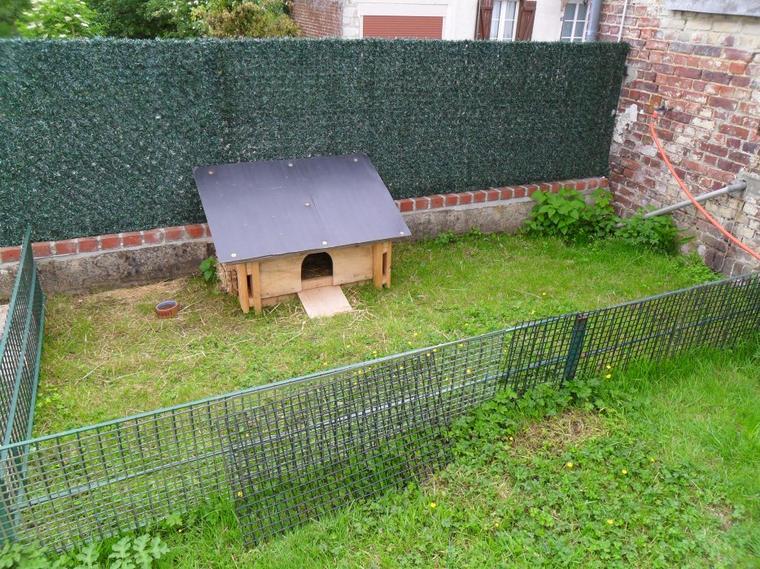 Installation exterieur elevage familial de cochon d 39 inde for Cabane a lapin exterieur