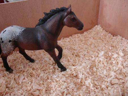 les nouveaux chevaux.
