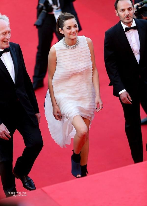 """- FESTIVAL DE CANNES 2014 -  Marion Cotillard marche sur le tapis rouge à la première de son dernier film """"Two Days, One Night""""  (mardi (20 mai ) à Cannes , France )"""