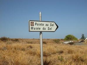21 JUILLET 2013 : RANDO SANTE DE STELLA A LA POINTE AU SEL A ST-LEU (Aller-retour)