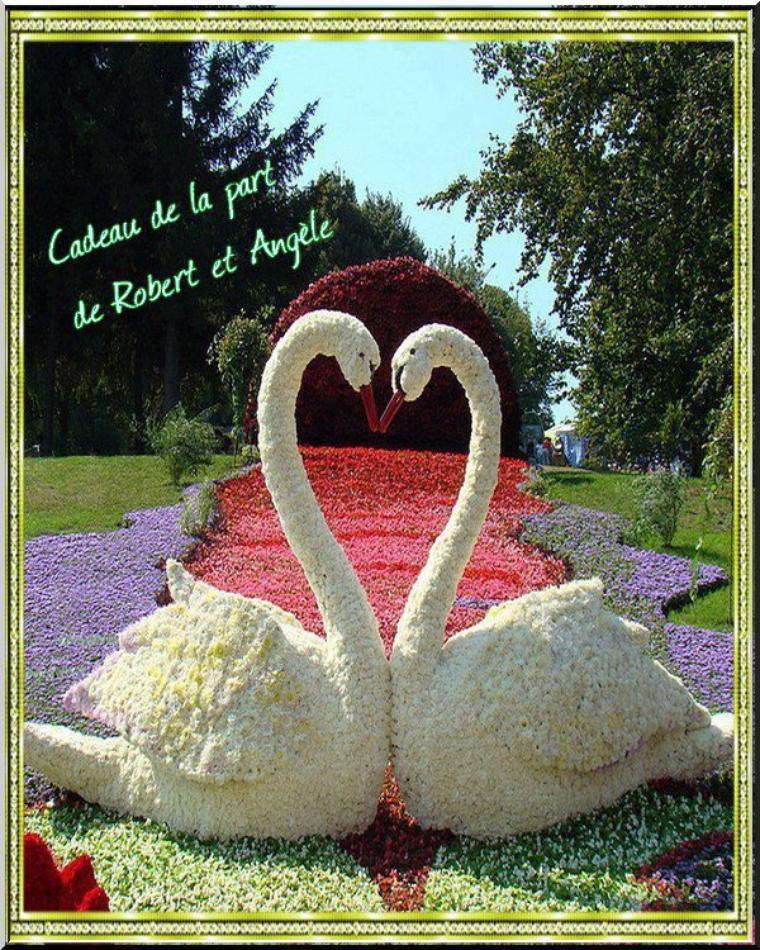 Magnifique cadeau de Robert et Angel. Merci beaucoup !!
