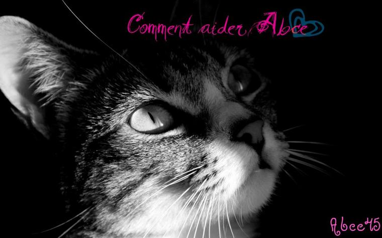 COMMENT NOUS AIDER ?.